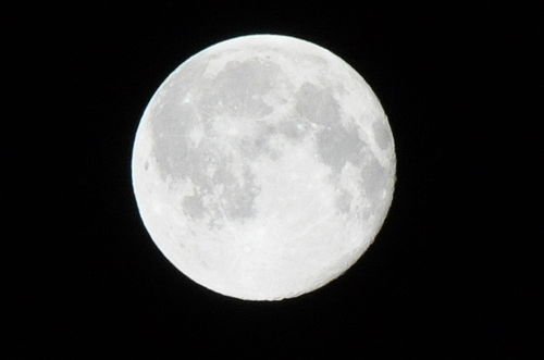 今日の一枚「Full Moon」