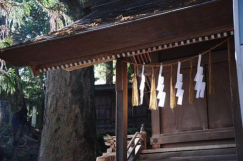 いい雰囲気の神社だった。