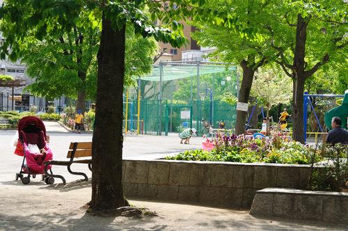 今日の一枚「光差す公園」