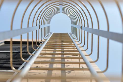今日の一枚「梯子」