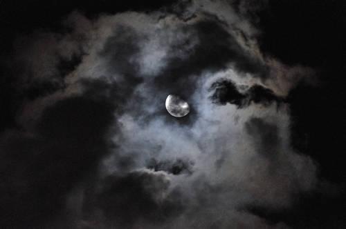 今日の一枚「月」