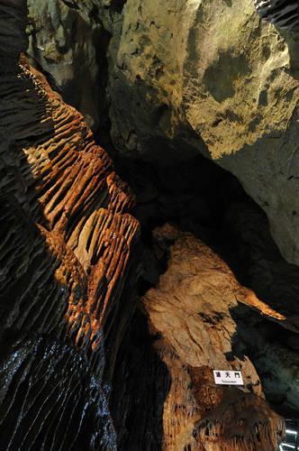 今日の一枚「龍河洞2」